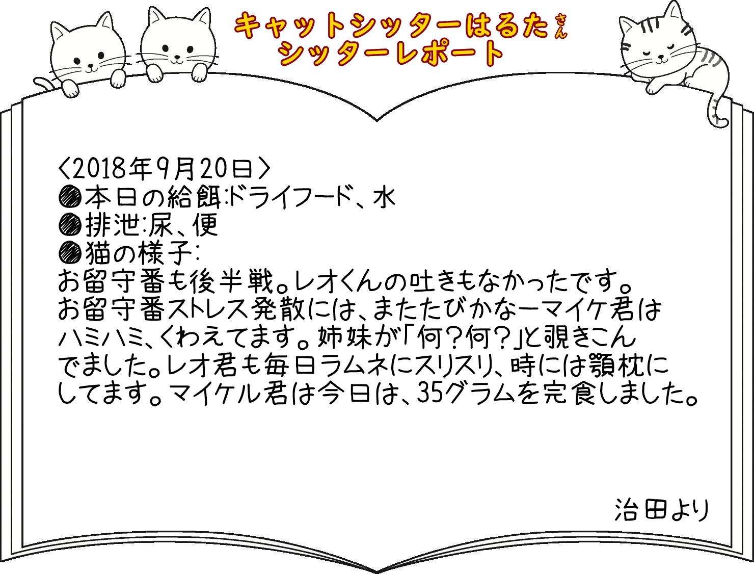 レポート6